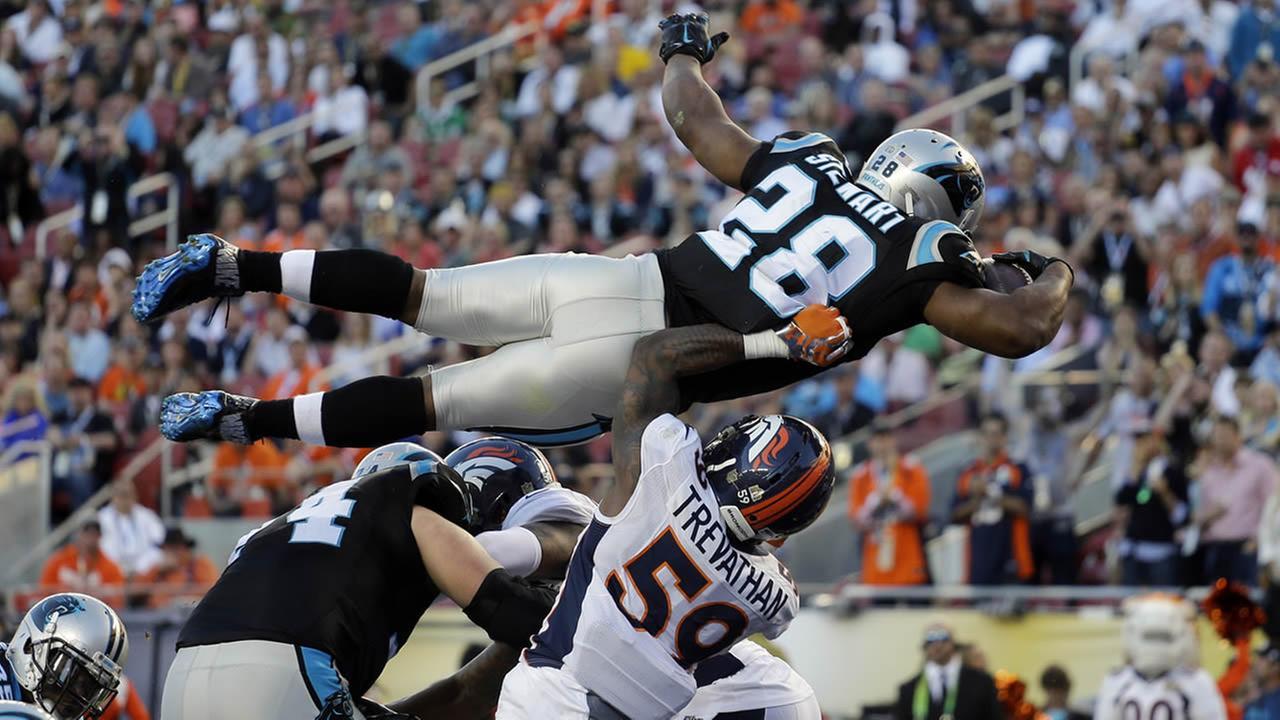 Malgré ce TD acrobatique, les Panthers n'ont jamais réussi à trouver la solution (ABC)